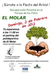 recuperacion_forestal_el_molar